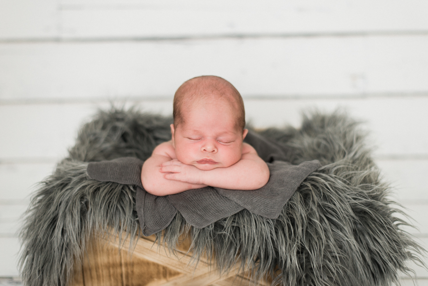 portland-newborn-baby-photography-peter-rabbit-theme-gray-fur-4.jpg