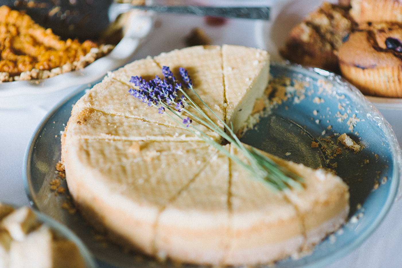 Dorris-Ranch-Springfield-Oregon-Food-Wedding-Cake-Pie-Cheesecake-Potluck-DIY-Nature-Rustic-Portland-Natural-Light-Photographer-Shelley-Marie-Photography-1.jpg