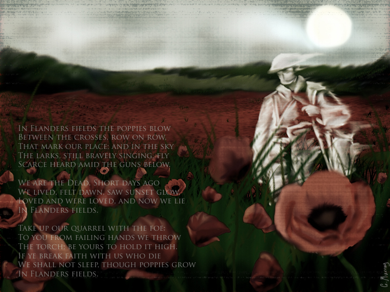 Photo courtesy of http://papermonicle.deviantart.com/art/In-Flanders-Fields-142844046