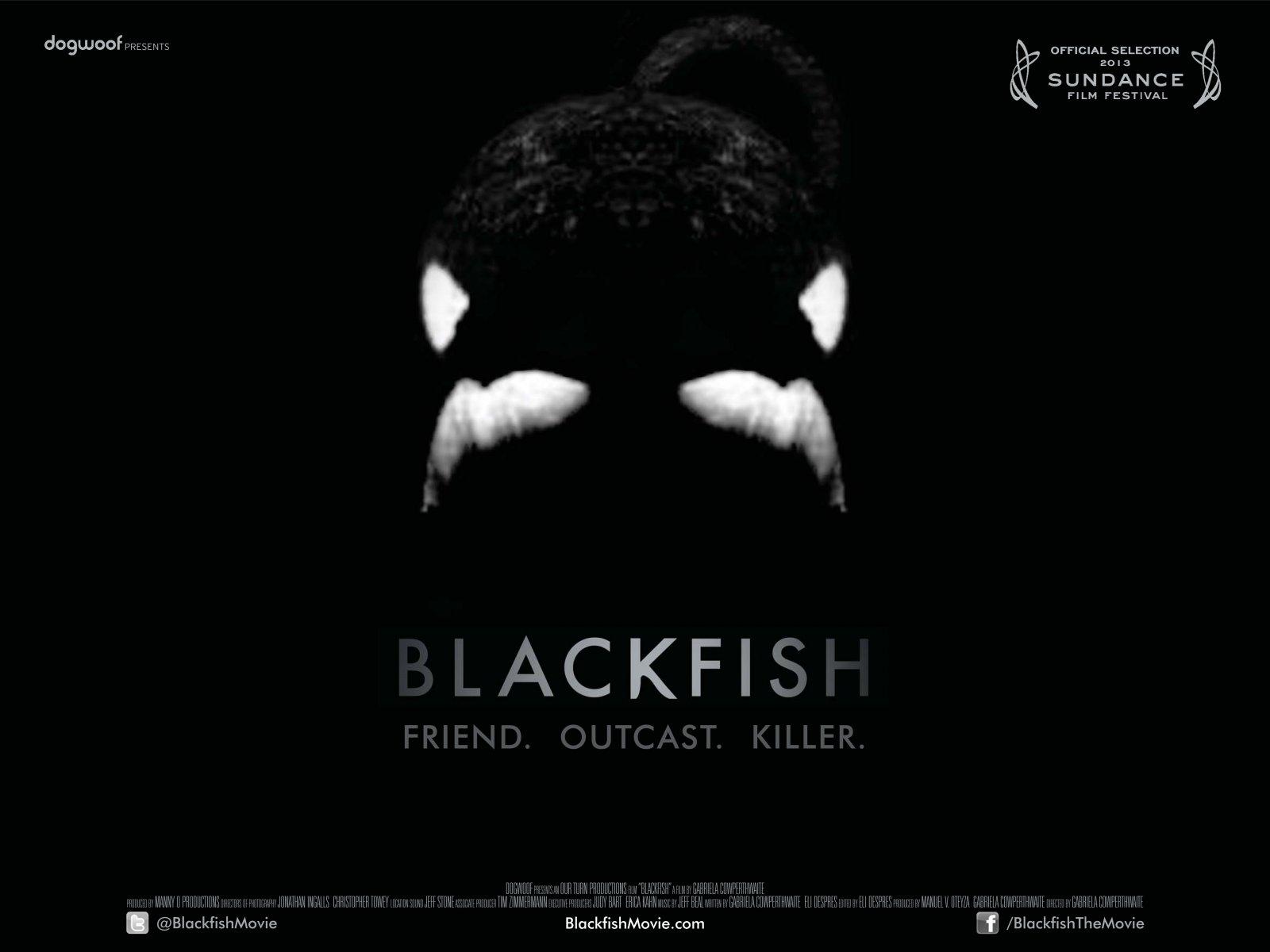 Dogwoof_Documentary_Blackfish_Quad_New_1600_1200_85.jpg