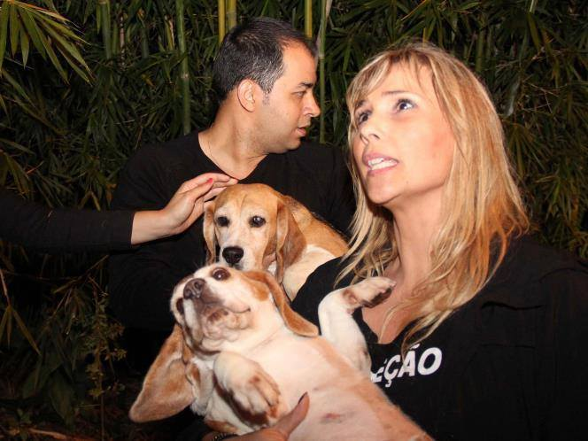 Two of hundreds of beagles rescued from a laboratory by 269life Brazil.