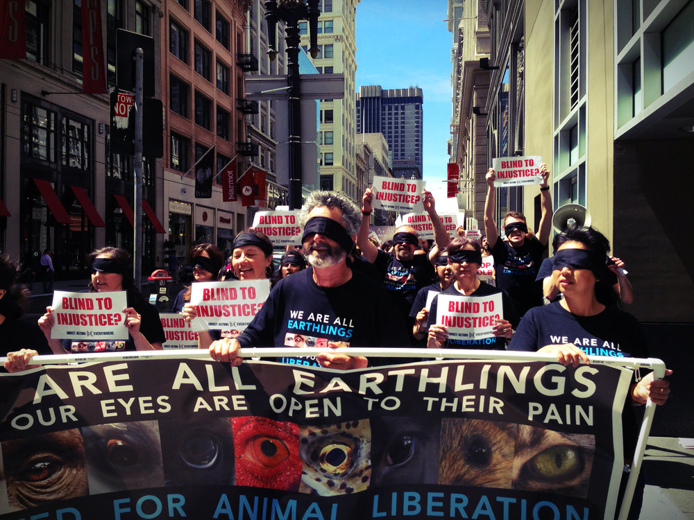 Thousands of activists across the world took to the streets as part of DxE's Earthlings March in August 2013.