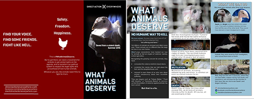 What Animals Deserve Leaflet - Letter sized, double sided