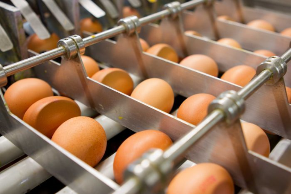 A recent analysis found that cage-free eggs cost 30 cents more per dozen to produce -- but    retailers charged 86 cents more    to consumers. The difference becomes profit that fuels the industry's growth.