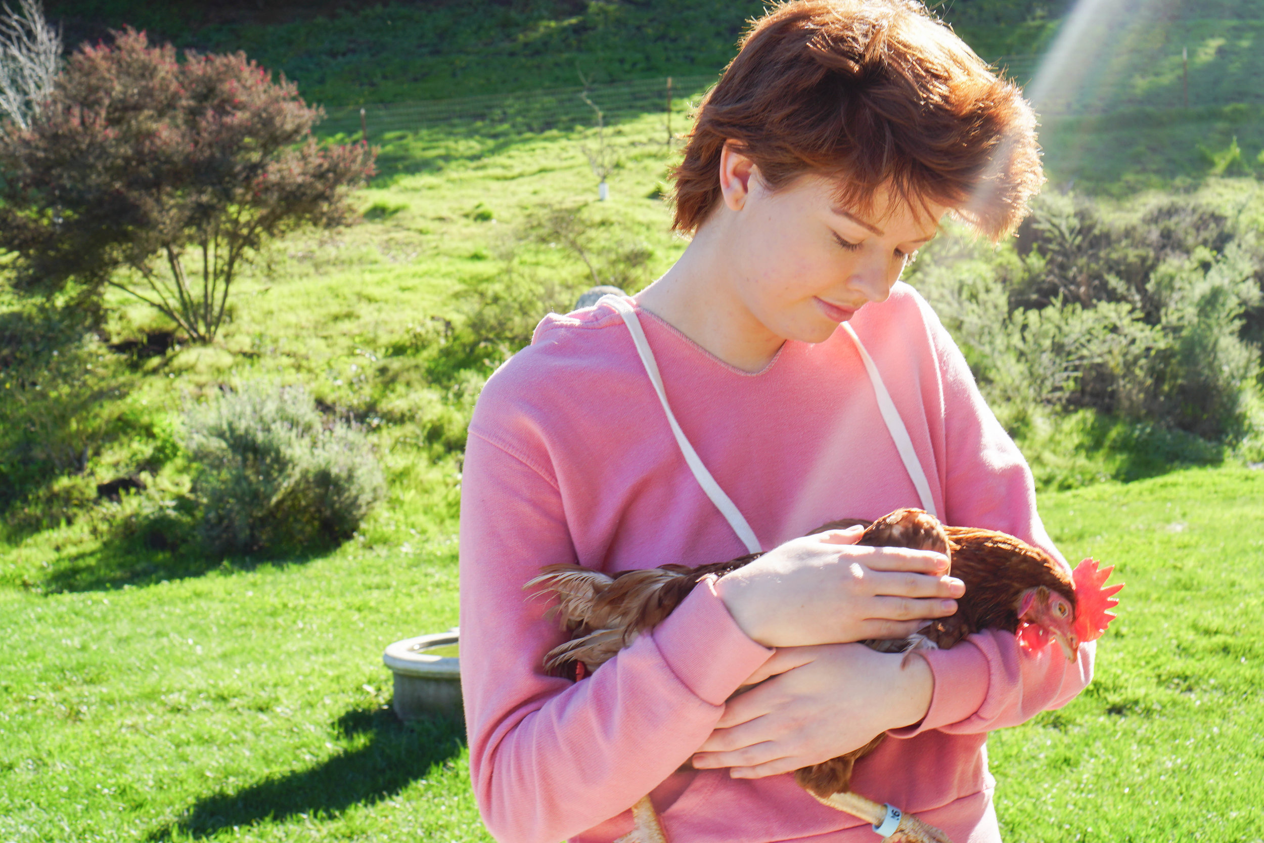 DxE activist Cassie King holds Chloe at her new sanctuary home