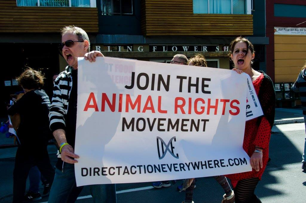 Join the animal rights movement