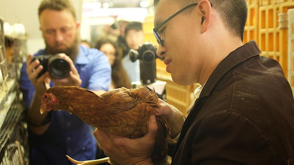CHINATOWN: Animal Rights Activists Free Chicken From San Francisco Chinatown Market - May 30, 2017CBS