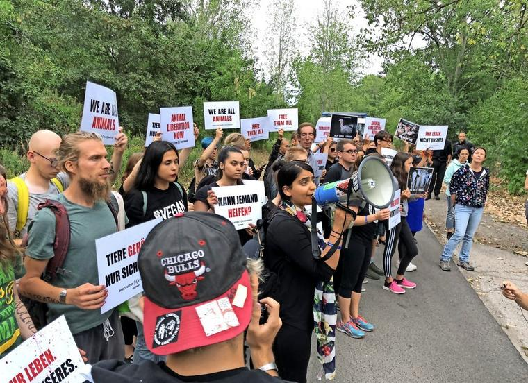 DxE organizer Priya Sawhney leads a protest in Berlin.
