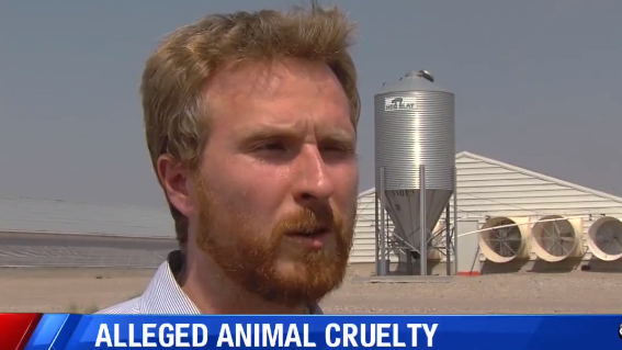 Efforts by animal activists to meet with owners of Circle Four Farms rejected - August 6, 2018ABC Utah