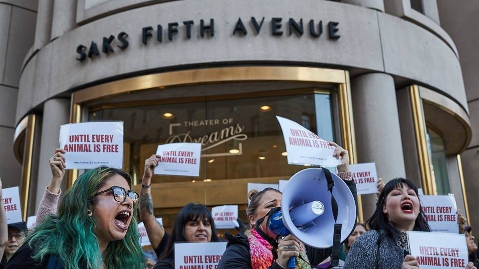 Activists push for enforcement of new fur sales ban - January 3, 2019SF Examiner