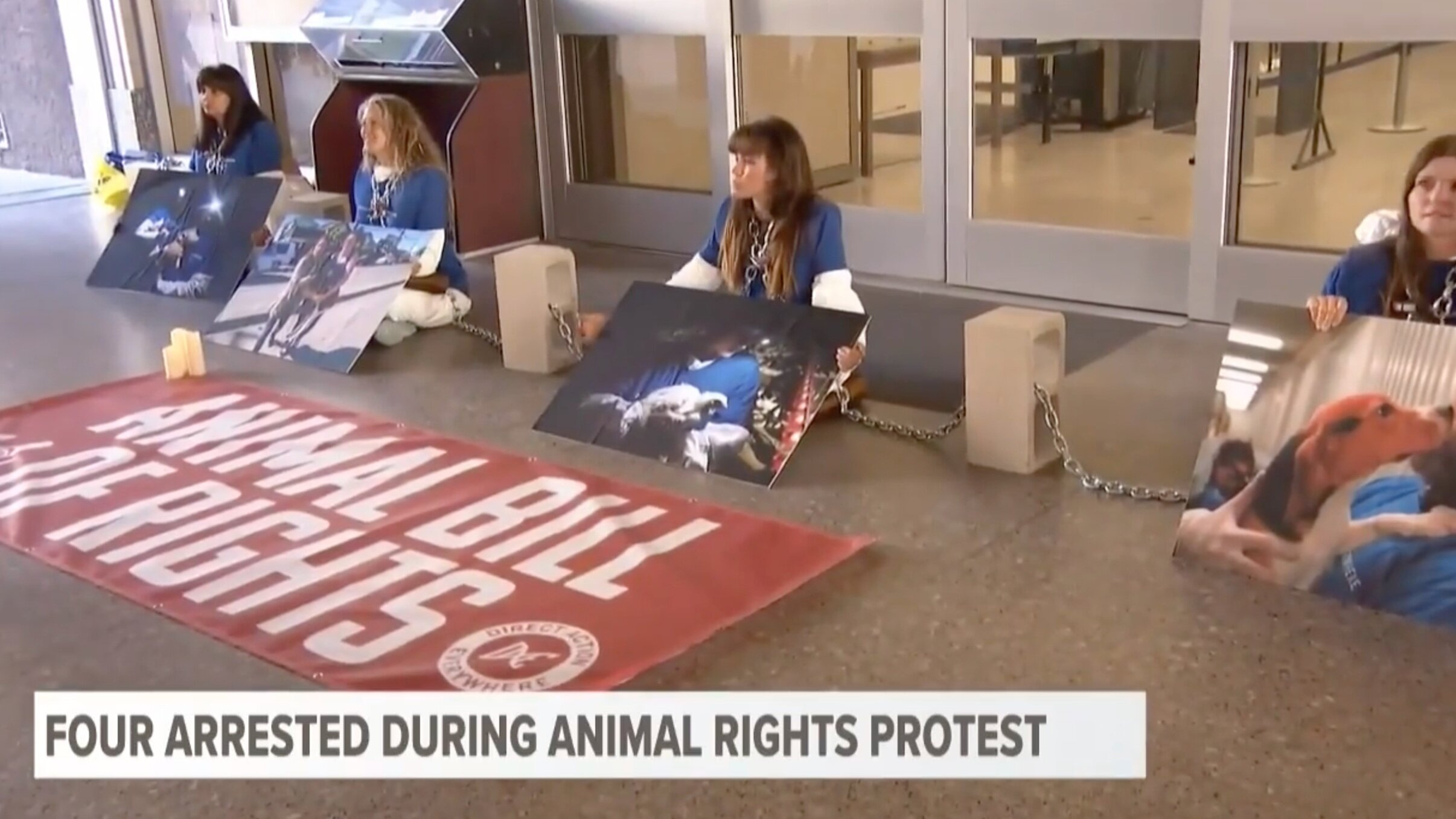 Four Arrested During Animal Rights Protest - October 4, 2019CBS San Diego