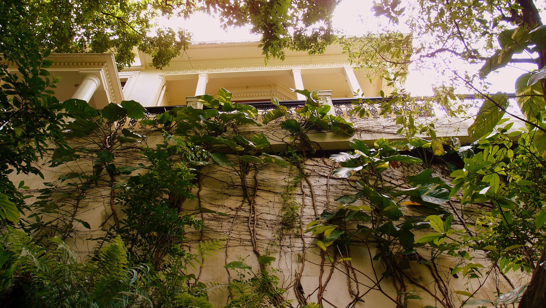 No. 1 Chatham Path - a gorgeous house