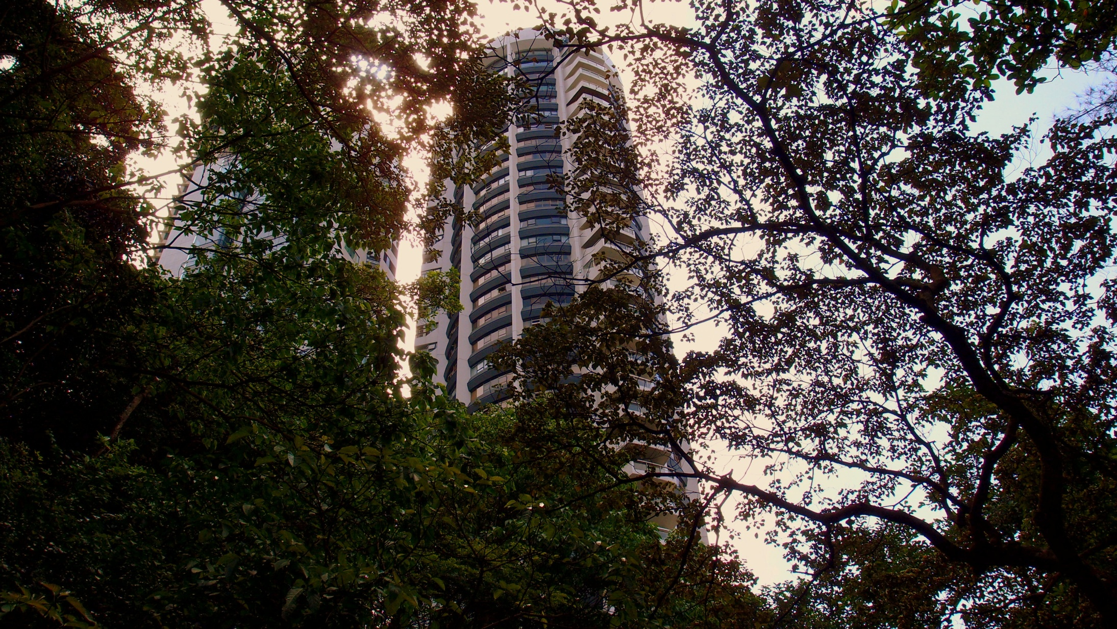 Century Tower on May Road