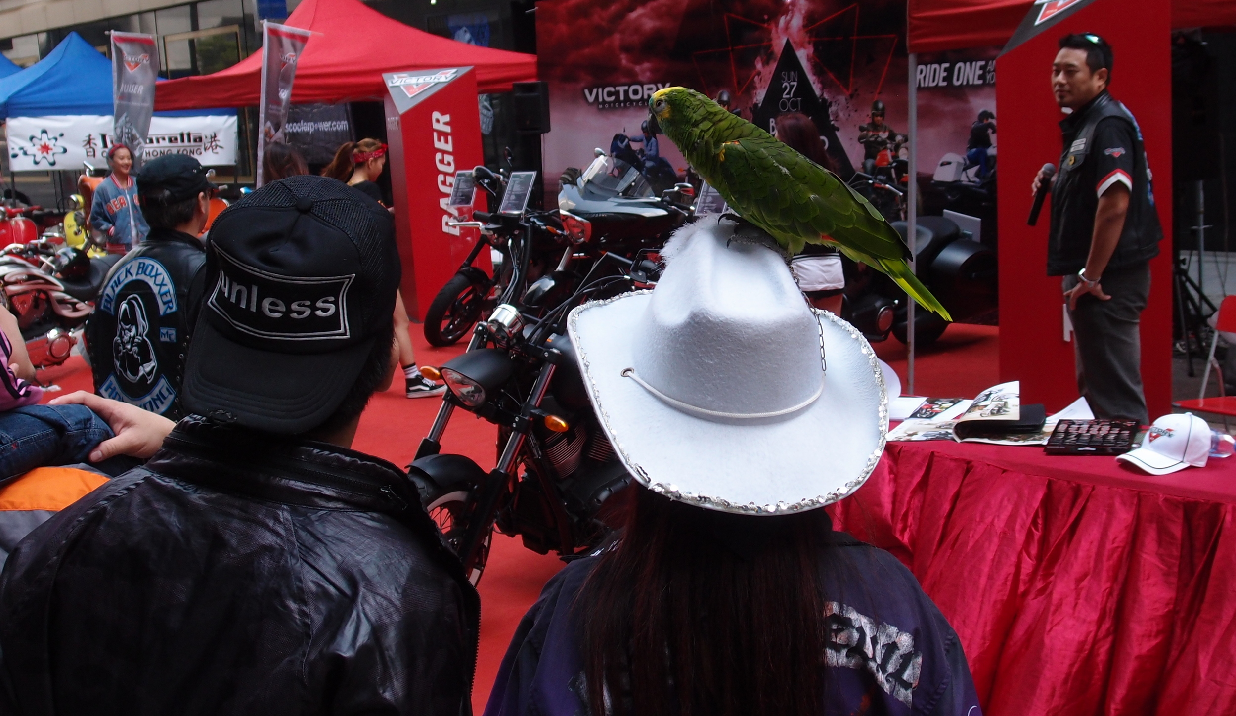 Yes, this lady really was walking around with a parrot on her head.