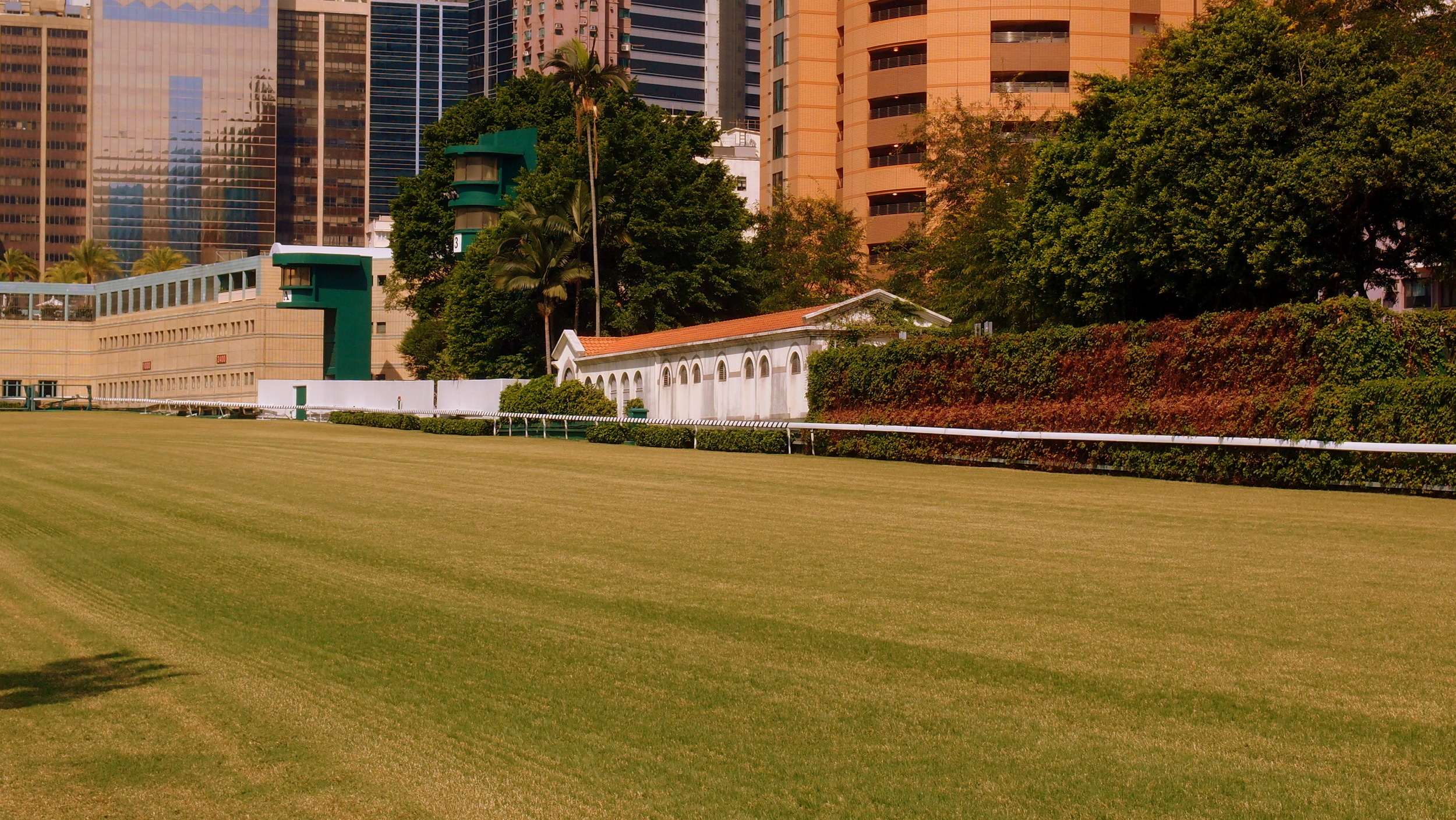 For those that want to touch the hallowed turf of the Happy Valley racetrack - I can arrange it!