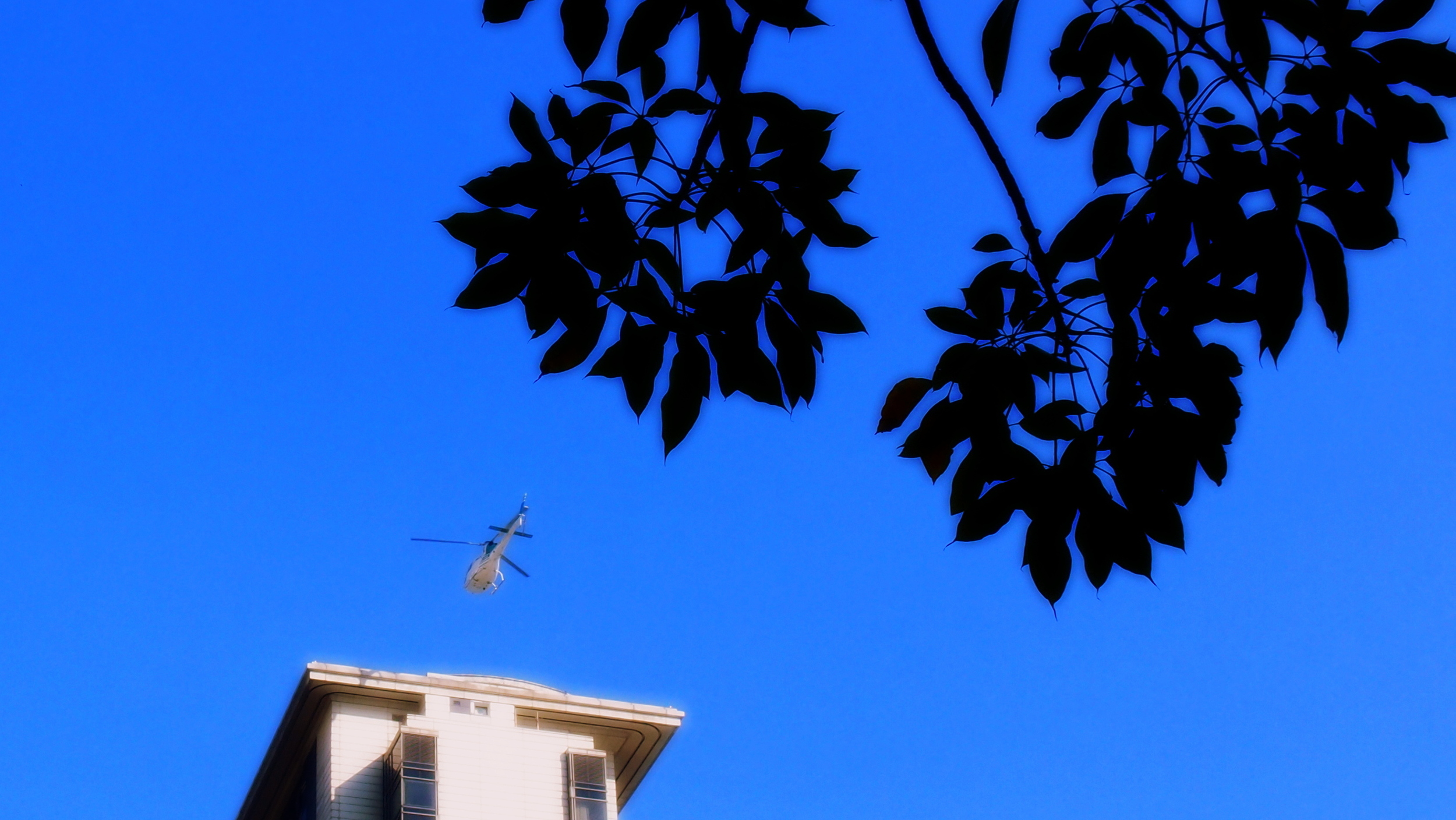 The Peninsula Hotel helicopter landing, as taken from the Hullett House Hotel