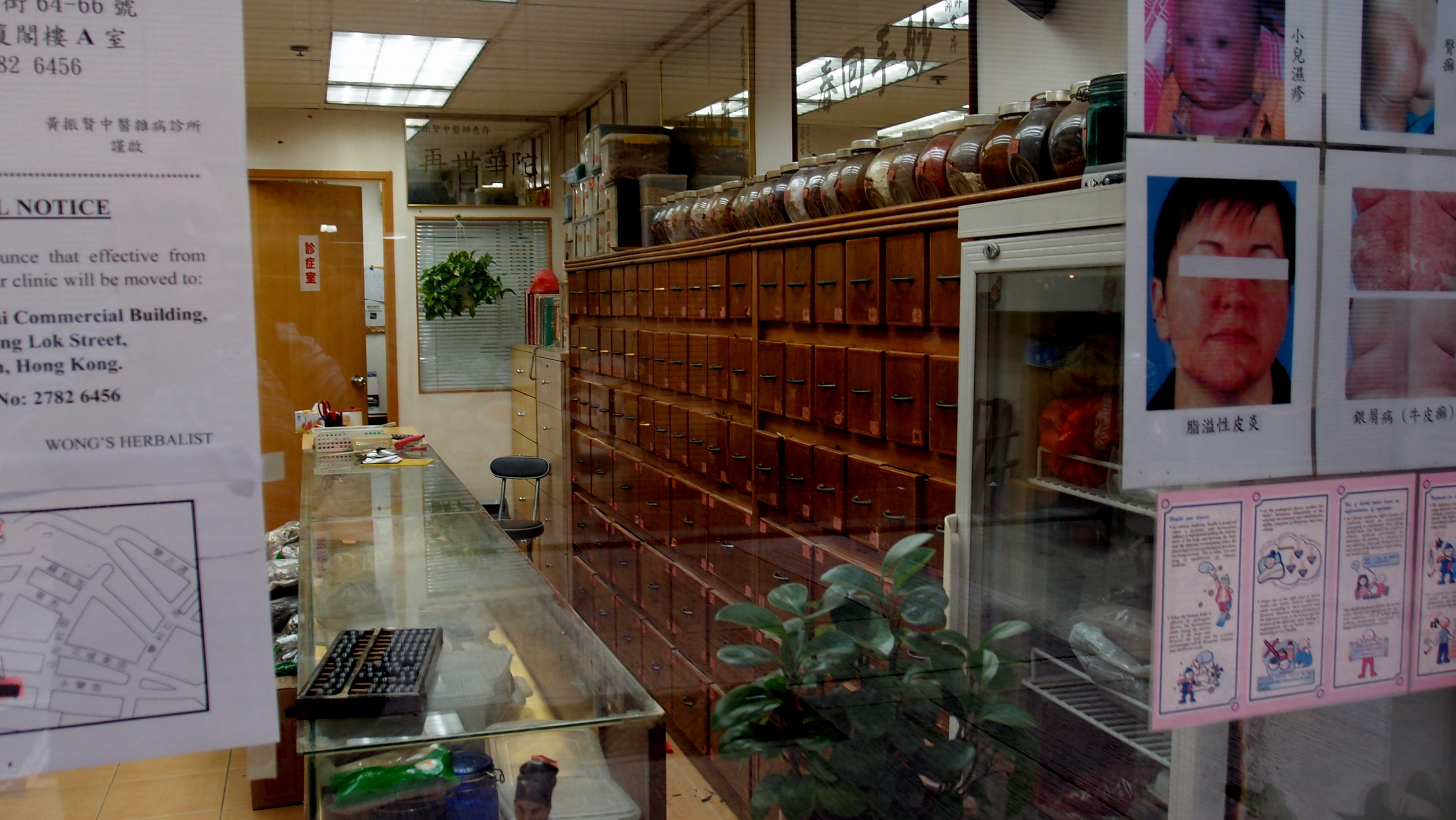 The cure for every disease in the world today can be found in this traditional Chinese Medicine shop