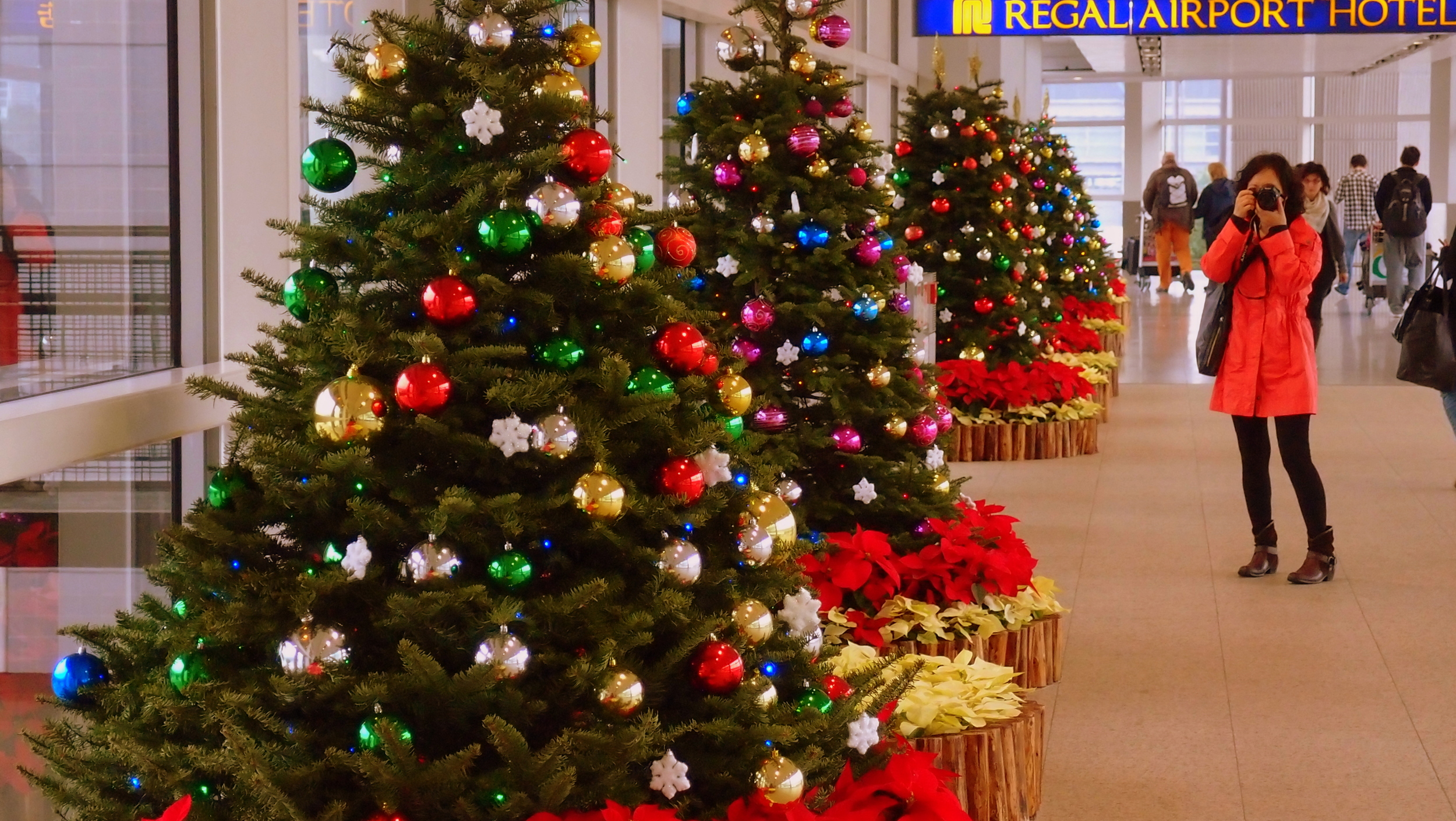 Me being snapped taking a photograph of Christmas Trees at the Aiport.