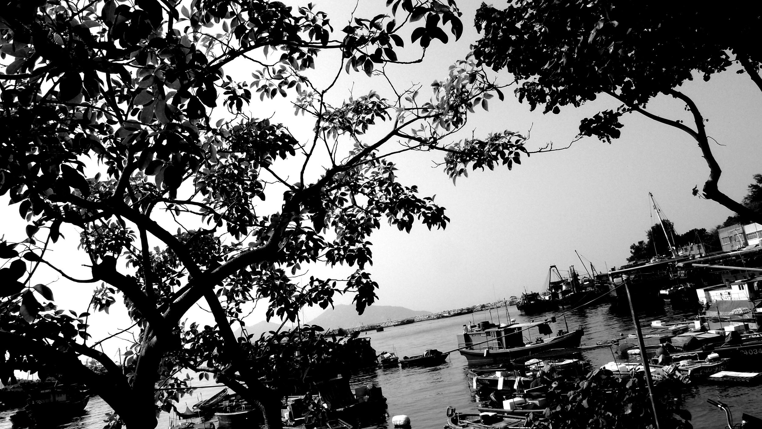 Cheung Chau Island in black & white