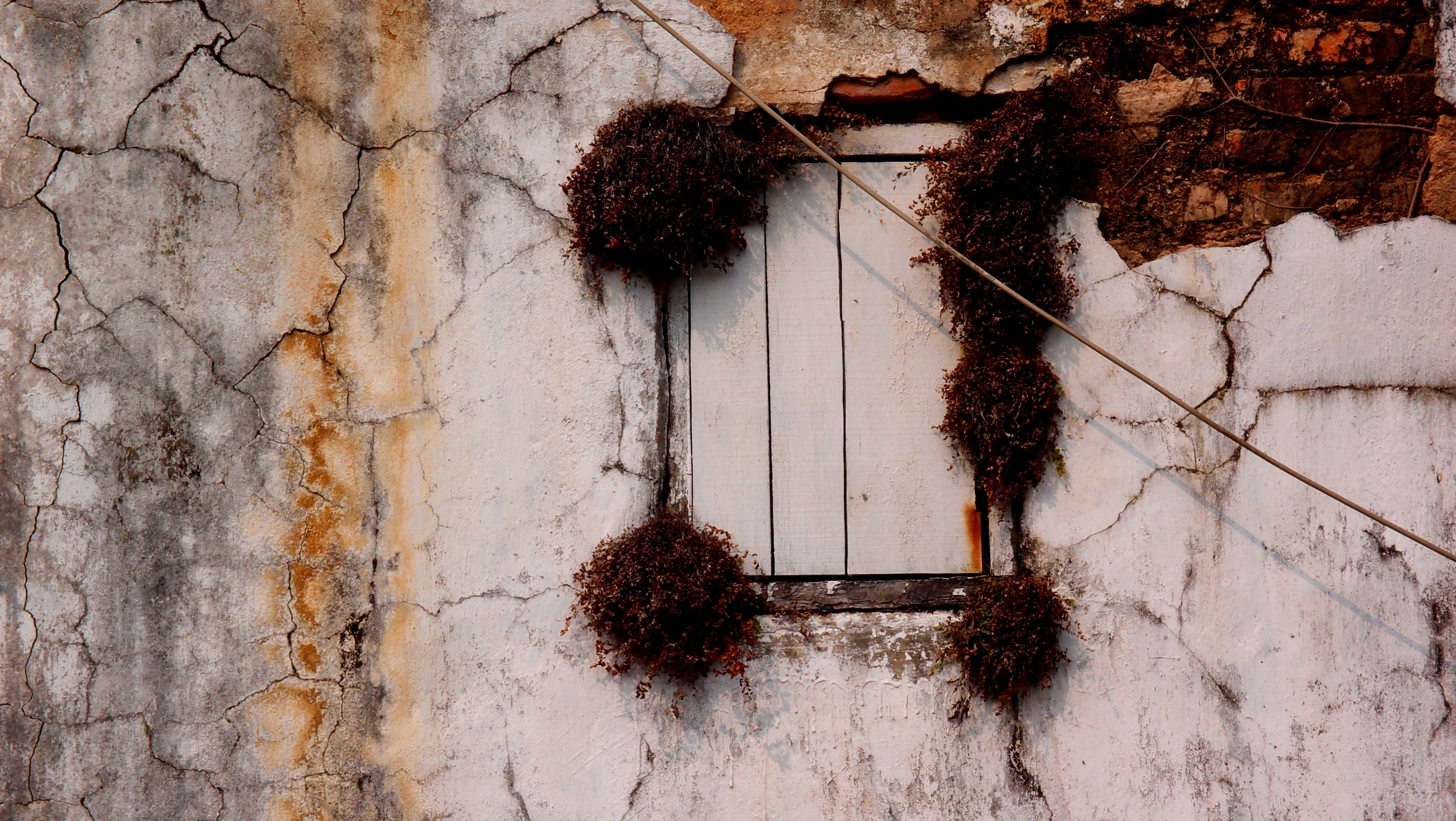 An old wooden window at the Tao Fishing Village