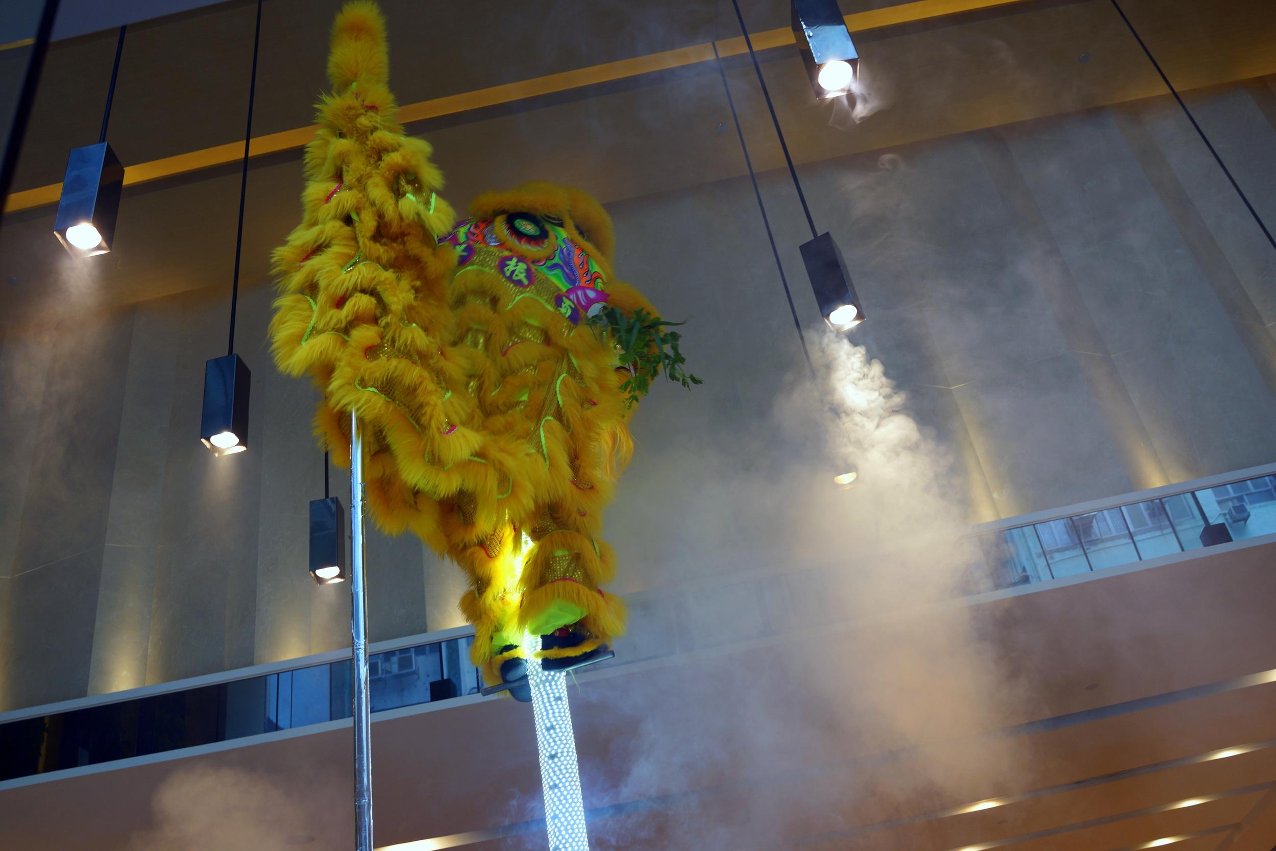 A traditional Hong Kong lion dance