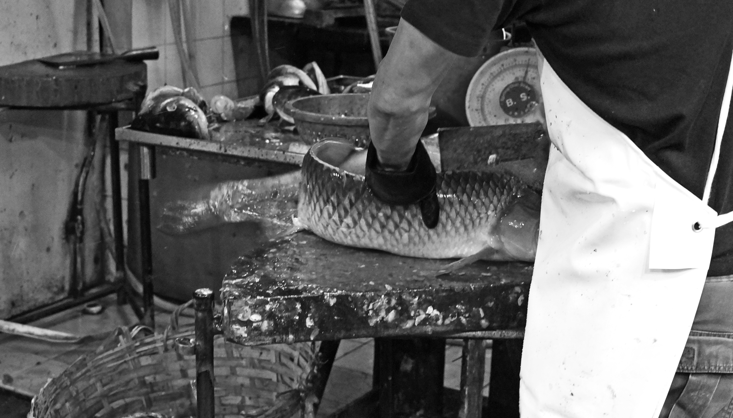 A grainy, gritty black and white image from a gritty place - Mong Kok., oh... the fish is stunned and not quite dead when it is sliced and diced