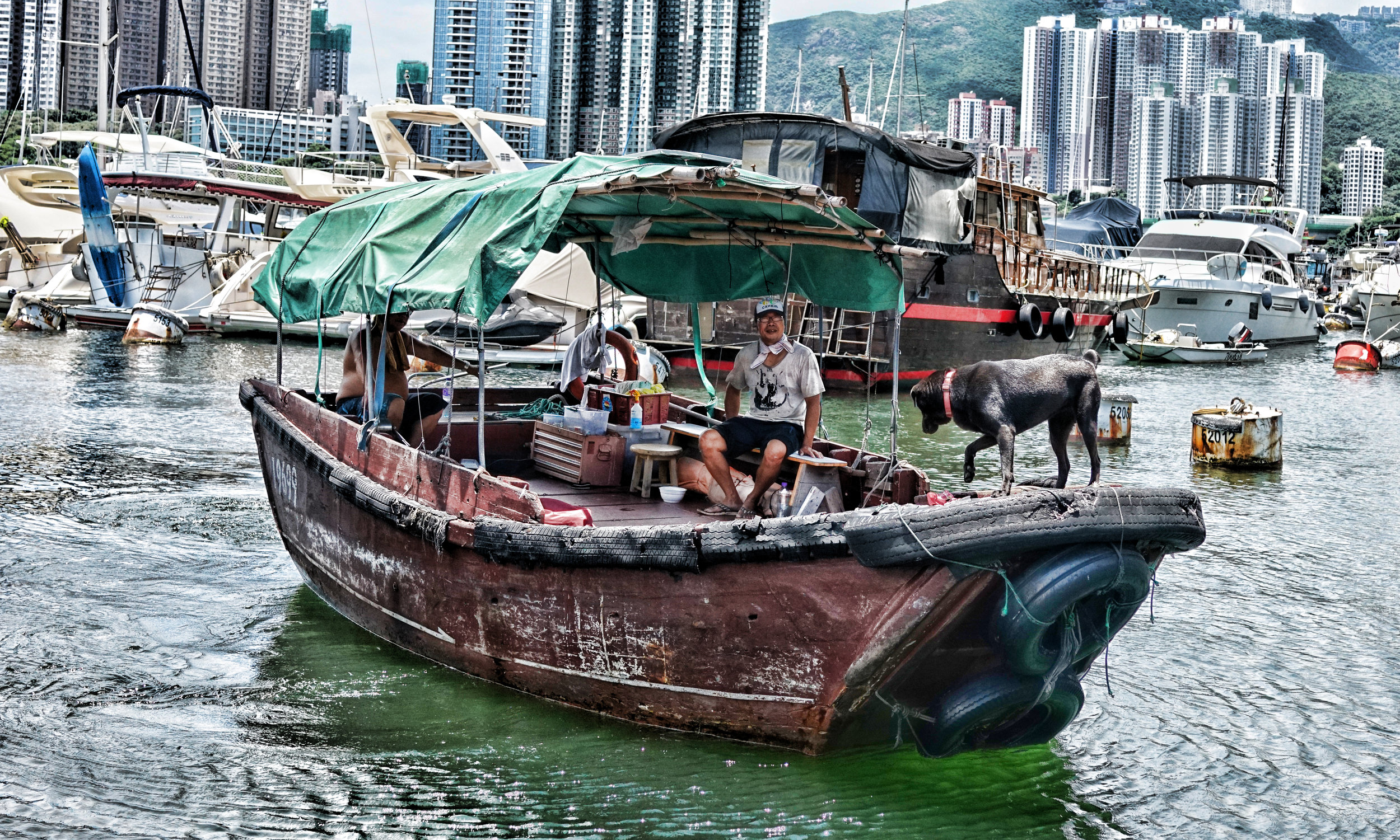 There's life in the old dog yet! a scenic view of Aberdeen Harbour on the southside of Hong Kong Island.