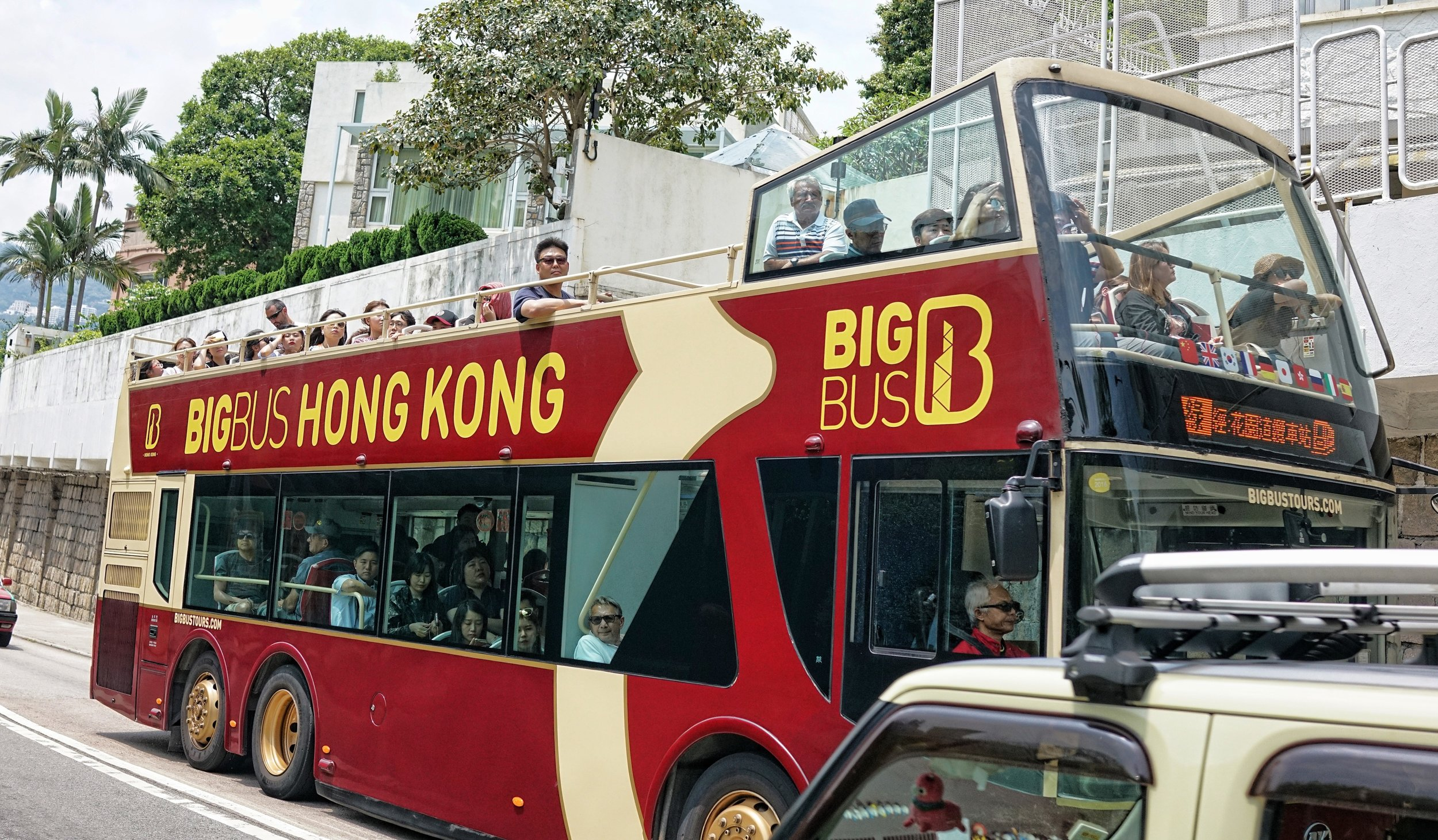 Not the best way to see Hong Kong | book a Premium Private Shore Excursion Tour of Hong Kong with Jamie! -