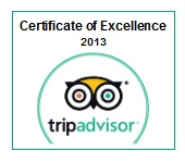 Certificate of Excellence 2013.jpg