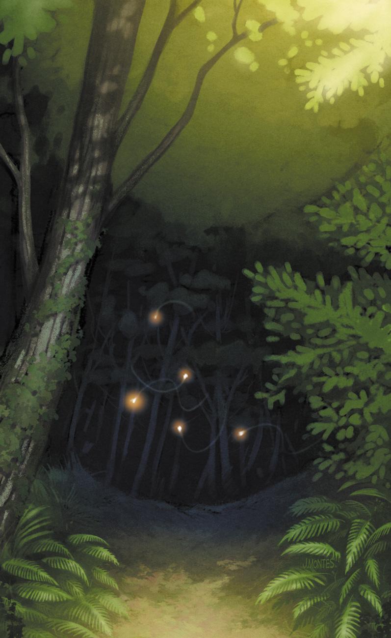 el bosque animado.jpg