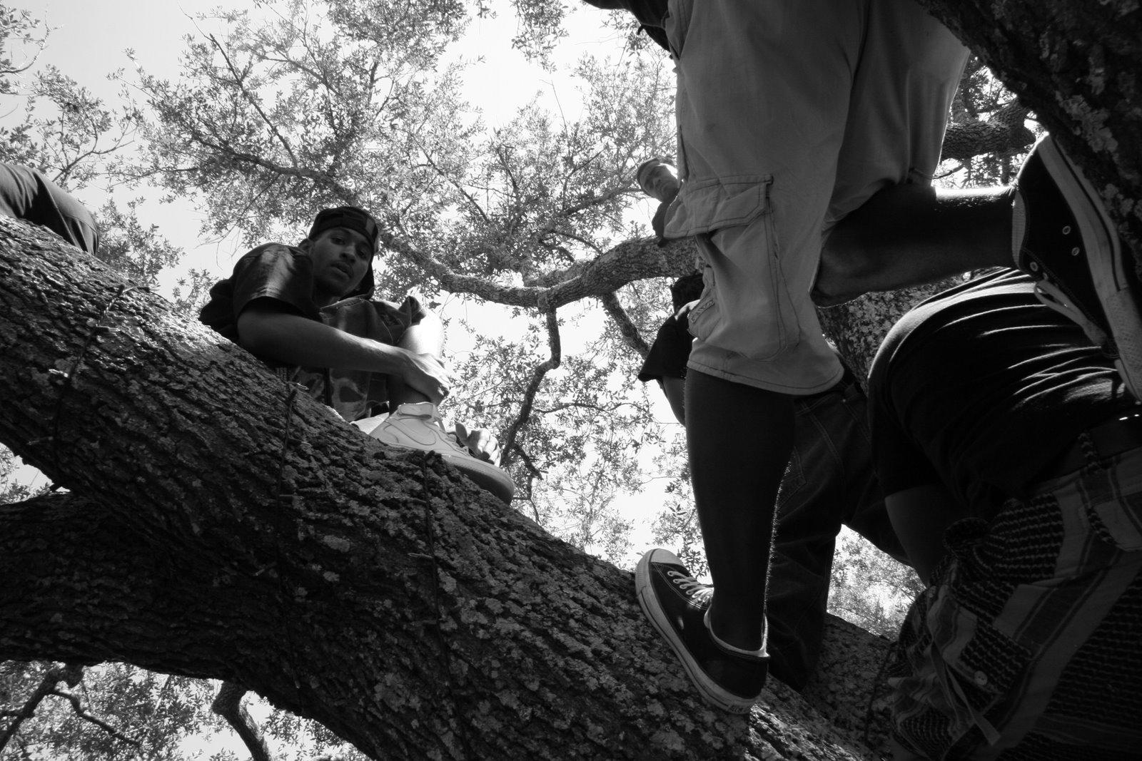We The People, Tree People - Jena, LA.JPG
