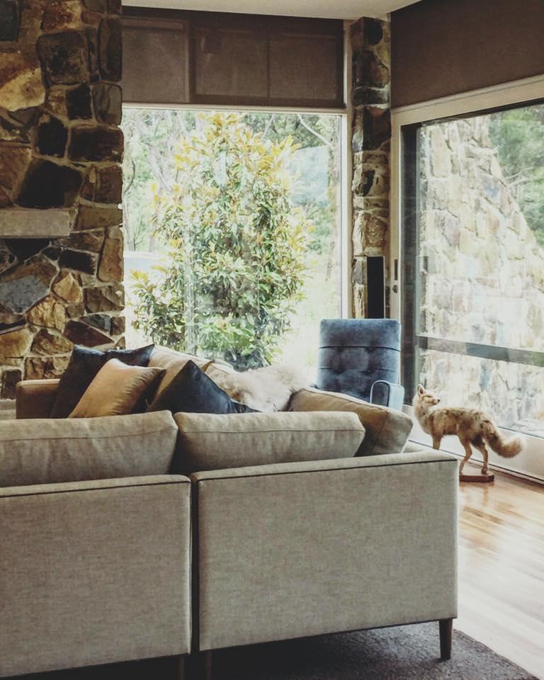 justin+bishop+interiors+melbourne.jpg