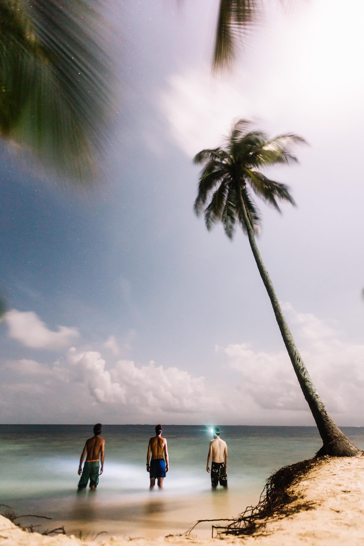 140806-HorizonteNorte-Panama-IslaPerro-007.jpg
