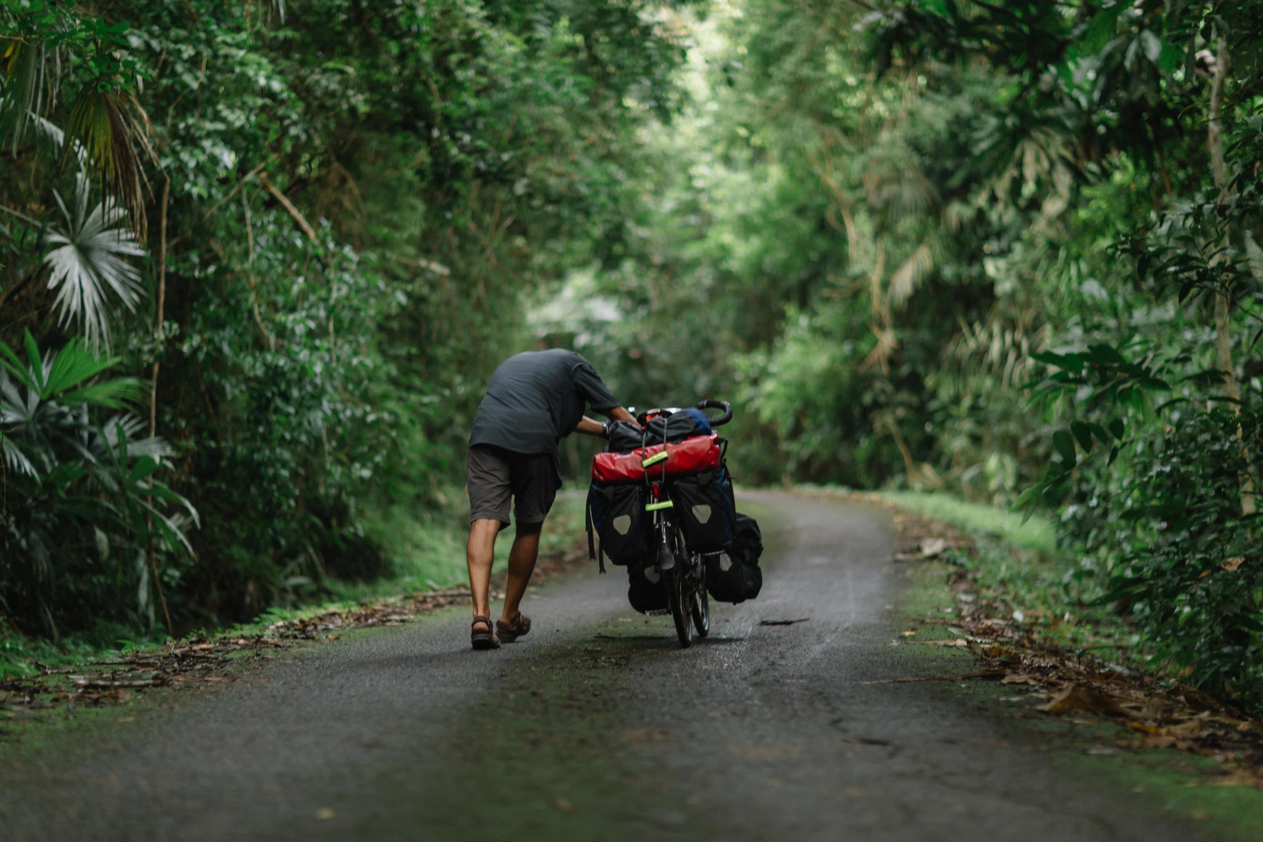 140810-HorizonteNorte-Panama-GamboaForest-004.jpg