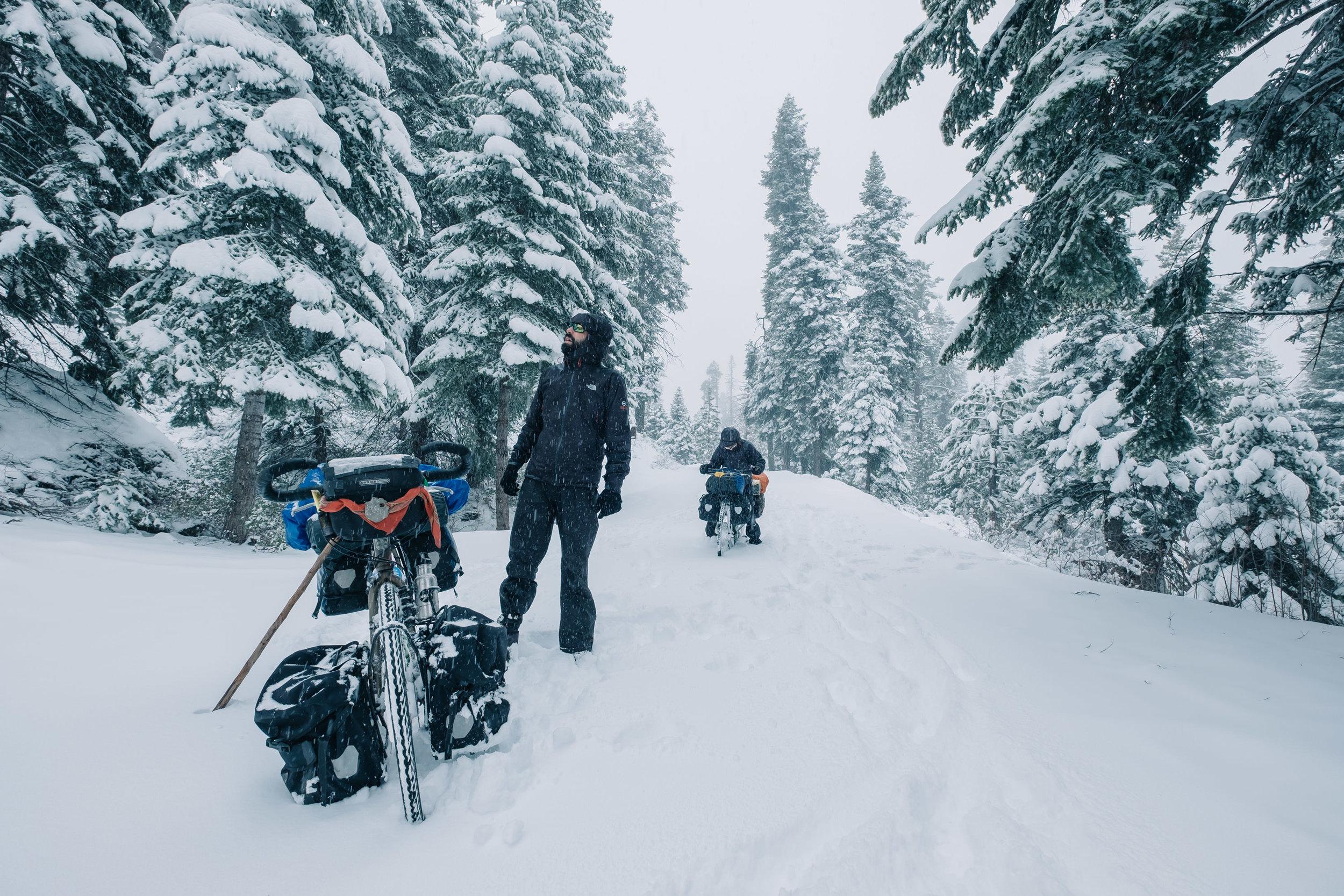 Horizonte Norte. El viaje de Juan Sisto desde Chile a Alaska en bicicleta. Kings Canyona, California 2014