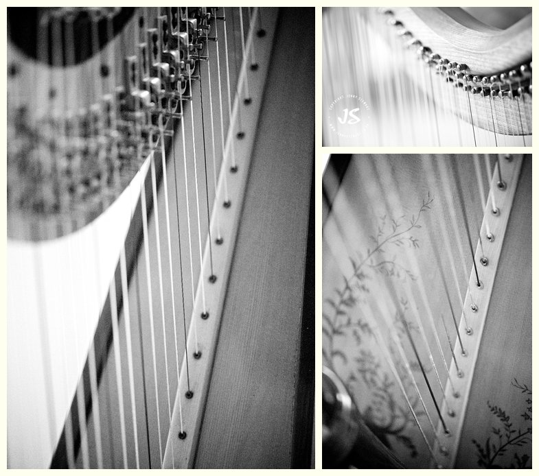 sally jenkins commercial portrait harpist