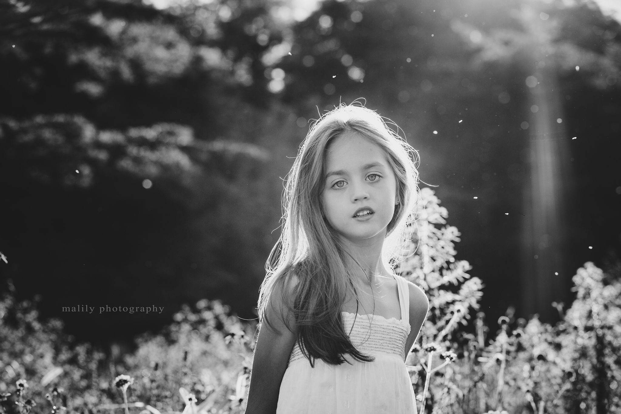 malily photography | Reading, PA Child Photography
