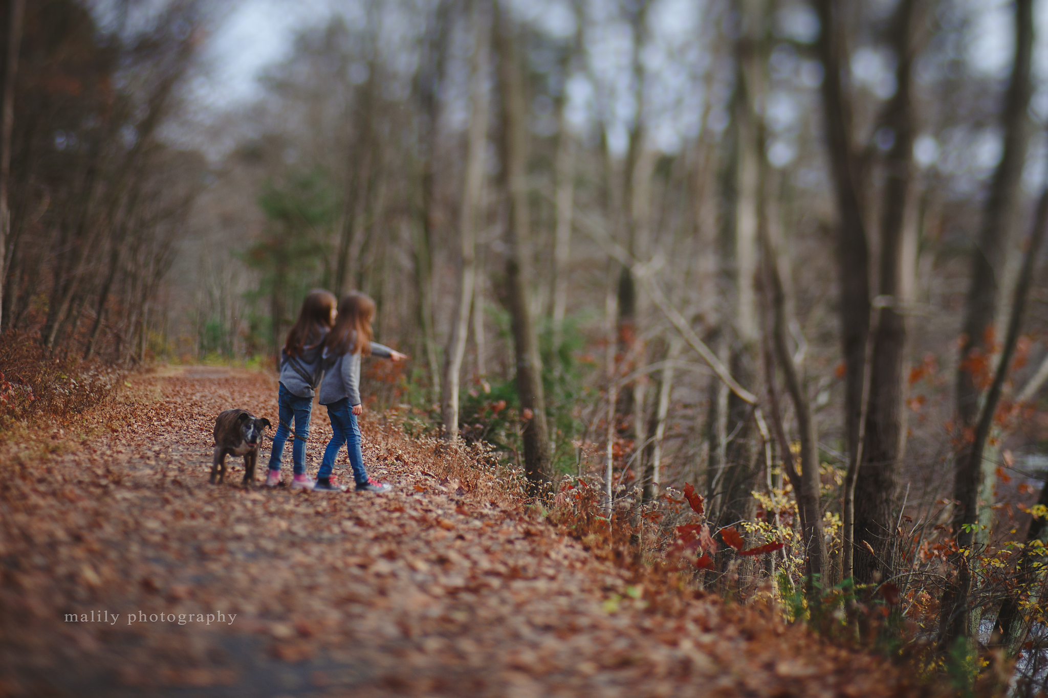 malily photography | schuylkill haven photographer