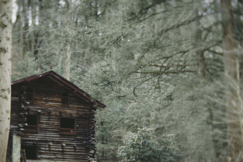 Ashlee Krammes | Shooting with Lensbaby Velvet 85