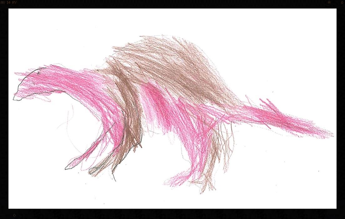 By: Dymen,1st Grade