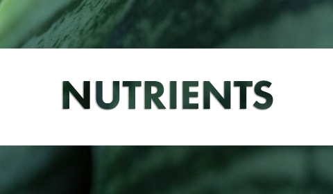 GH Nutrients