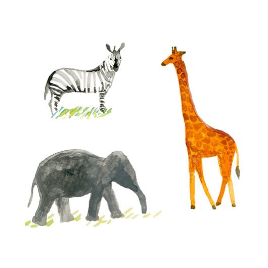 safari animals.png