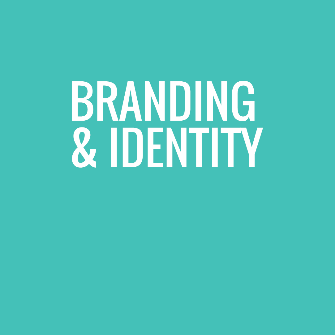 we create brands that roar where it counts: online & against your competitors.