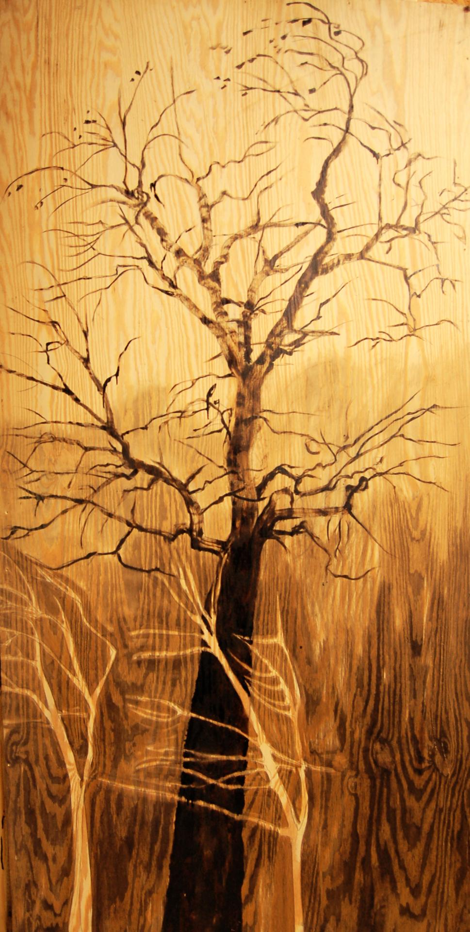 Trees in Season: Cottonwood and saplings