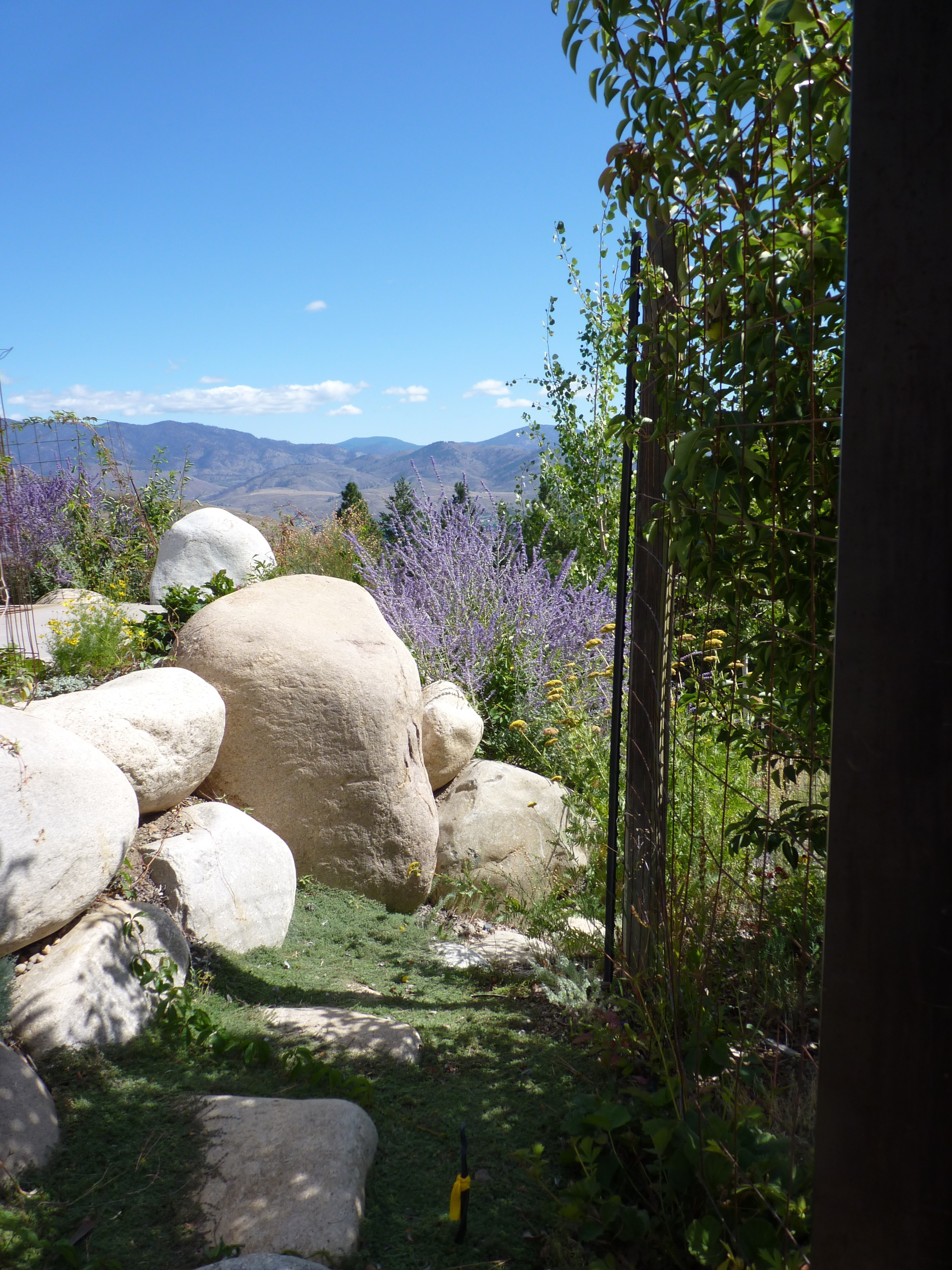 path with boulders nice garden view.JPG