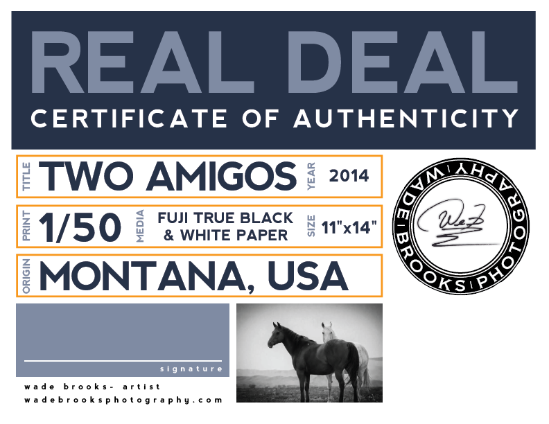 Certificate_Authenticity.png