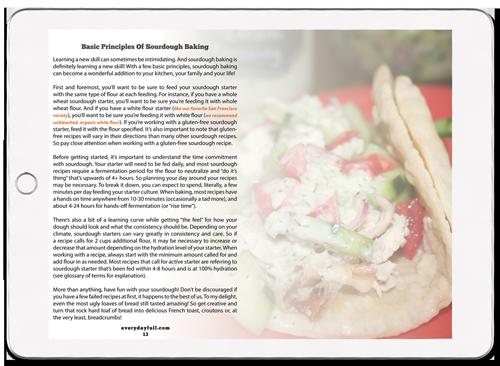 Sourdough-Recipe_eBook_iPad-Pro_Basics.png