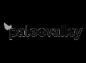 Paleovalley_2.png