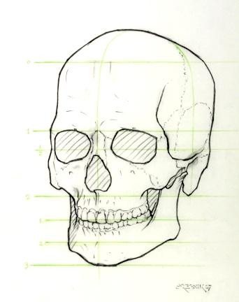 ps an 1570Skull.jpg