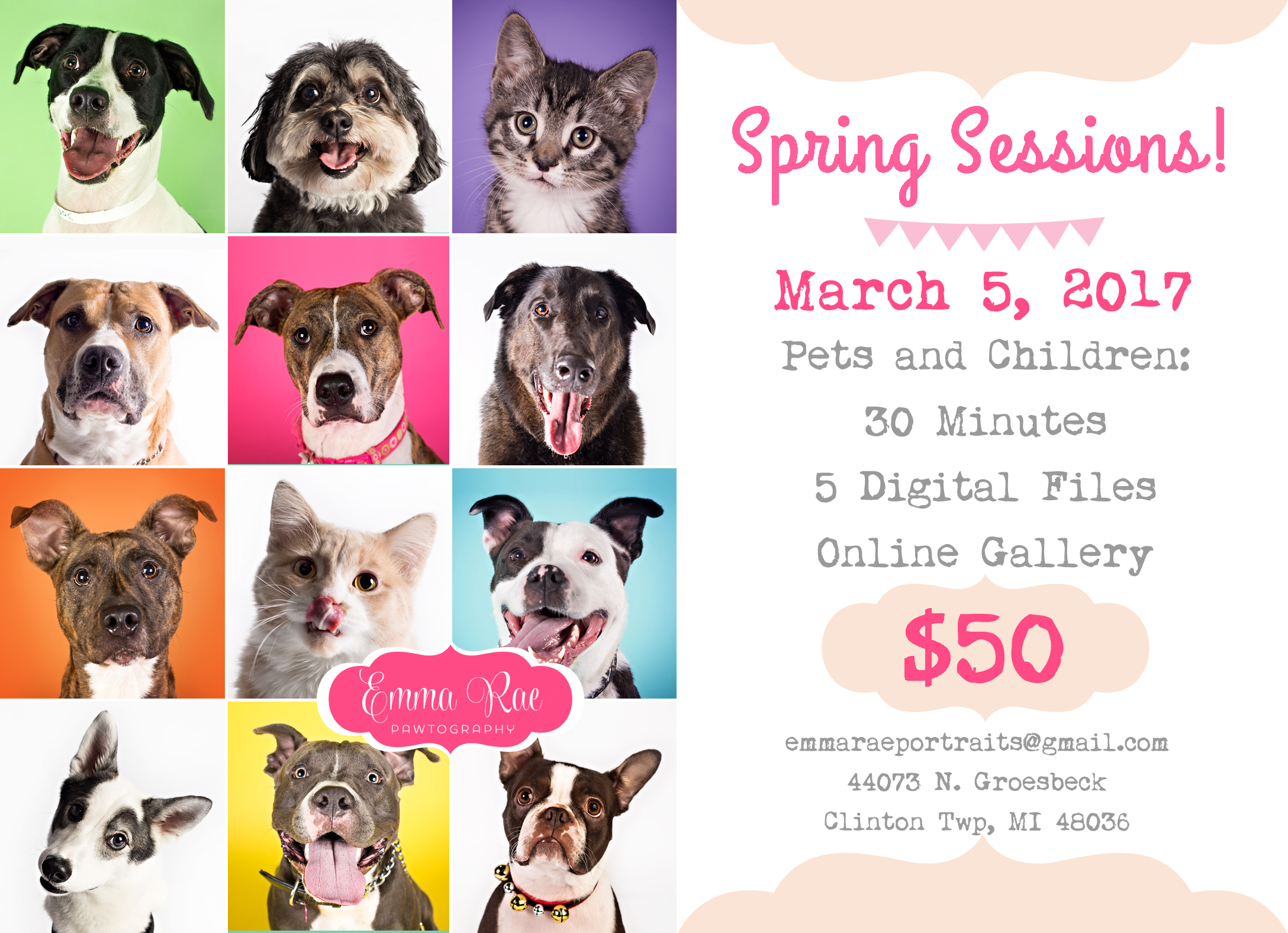 Now booking spring mini pet portrait sessions to benefit A ReJoyceful Animal Rescue! Only a couple time spots left, so book now if you want in! I will have a guest vendor with me: Pawsitively Loved. She sells handmade bandanas, coats, blankets, cat toys, and more, and she, too, will be donating a portion of the proceeds to the rescue!  I will be announcing another spring portrait fundraiser to benefit Tigerlily Cat Rescue in the coming weeks ~ this second event will be open to pets only.
